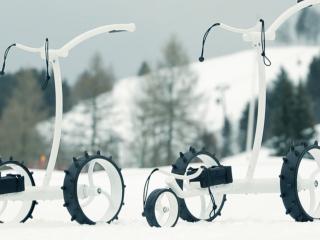 Chariots de golf VIDmaxx